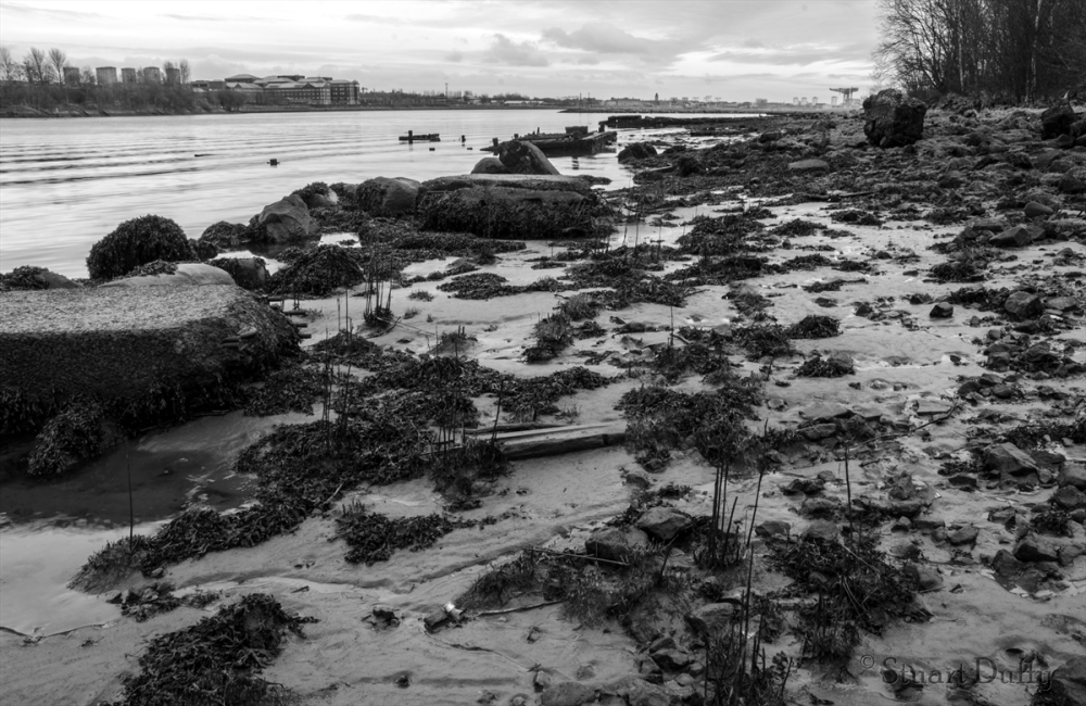 A beach on the banks of the Clyde.