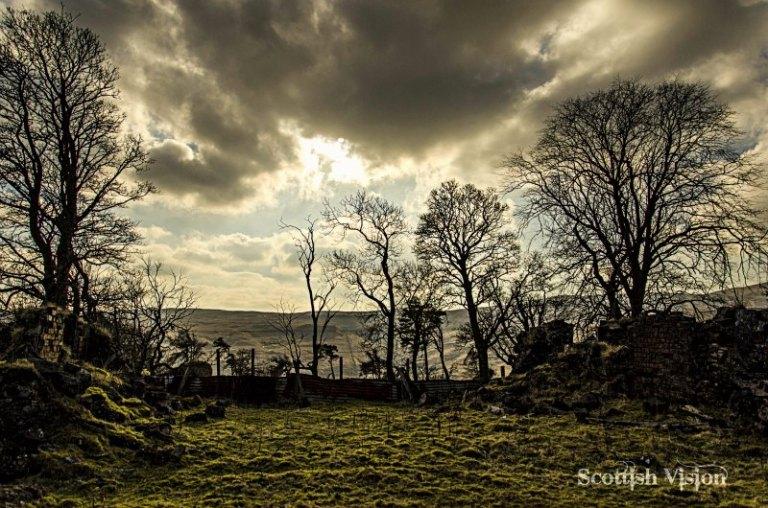 A Scottish Oasis